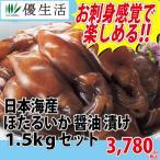 イカ いか 日本海産 ほたるいか醤油漬け1.5kgセット