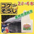 【コケそうじ業務用濃縮液20倍濃縮】2L×4本セット・天然由来成分で安心・しつこいコケに!