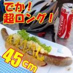 ラテン大和 ビッグ 生ソーセージ リングイッサ MEGA45 320g(45cm)×5本=1.6kg