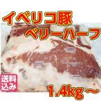 送料無料=イベリコ豚=【バラ肉】=ハーフベリー約1.4kg