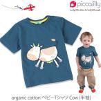 オーガニックコットン ベビーTシャツ Cow (半袖) / piccalilly (ベビー服 赤ちゃん ベビーウェア 赤ちゃん服 新生児 綿100% tシャツ)