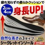 シークレットインソール  インソール 身長アップ 衝撃吸収 靴 中敷き かかと 上げ底 ヒール
