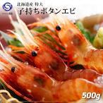 Shrimp - ボタンえび 500g前後・15〜20尾前後【えび エビ 海老】