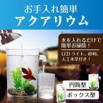 自動お掃除できる!水槽 金魚鉢 熱帯魚 メダカ 金魚 水槽セット 簡単お掃除 LEDライト付き