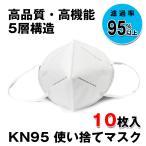 在庫処分価格 国内発送 マスク KN95 10枚入 3D立体 5層構造 男女兼用 大人サイズ 防塵マスク ウイルス 防塵 花粉 飛沫対策