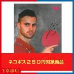 サービス品 送料250円〜 バタフライ(butterfly) クリアファイル バタフライ製品含む 2000円以上同時購入限定 Y卓球店 [M便 1/8]