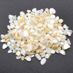 シェル貝 さざれ石(穴なし) 淡水シェル 5-7mm(50g)