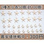 最安値挑戦中!チャーム ヒトデ5(100個入)