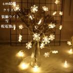 イルミネーションライト クリスマス 装飾ライト 6m LED電飾 40個 スノーフレーク クリスマスツリー 雪 装飾 乾電池式 オーナメント 飾り 室内