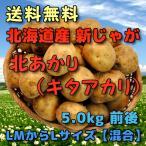 北海道産 新じゃがいも 北あかり 5kg LMからLサイズ 混合 きたあかり キタアカリ