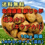 予約 北海道産 新じゃがいも 北あかり 10kg 前後 (きたあかり・キタアカリ) (LMからLサイズ【混合】)