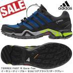 adidas(アディダス) TERREX FAST R Gore-Tex  イーキューティーブルーS16/コアブラック/ダークグレー (odadi)