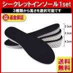 シークレット インソール 中敷き シークレットシューズ レディース メンズ 男性 女性 調整可能 かかと ブーツ スニーカー 定形外内