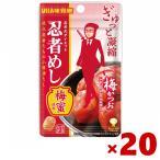 味覚糖 20g 旨味シゲキックス 忍者めし 梅かつお味 20袋(10×2) (ポイント消化) (np) メール便全国送料無料
