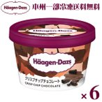 (本州一部冷凍送料無料) ハーゲンダッツ ミニカップ クリスプチップチョコレート 6入(冷凍)