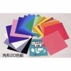 色彩学習や色彩検定に。 トーナルカラー角形(いろがみ) 20色組