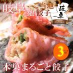 本巣まるごと餃子 10個入り(180g)×3パックセット 岐阜 餃子 お取り寄せ 冷凍