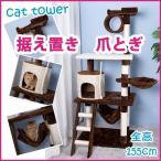 キャットタワー 据え置きキャットタワー 突っ張り 全高155cm ハンモク 階段 梯子 多頭飼う