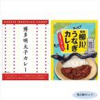 ご当地カレー 福岡博多明太子カレー&柳川うなぎカレー(うなぎパウダー入り) 各5食セット (APIs) (軽税)