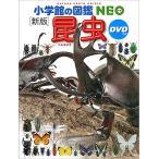 【10倍】小学館の図鑑NEO 昆虫(DVD付き)【ゆうパケット(追跡あり)送料無料】