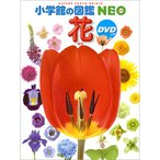 【10倍】小学館の図鑑NEO 花(DVD付き)