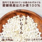大麦!愛媛県産押し麦(たいらくん) 500g  送料無料 押麦 はだか麦 国産 うるち性