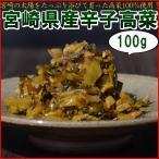 優しい高菜漬け からし高菜100g 送料無料