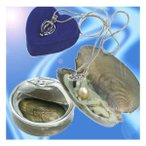 Yahoo!うめのやonline[YS]_缶パールネックレス 幸せを呼ぶ自分だけの真珠[メール便発送、送料無料、代引不可]