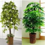 人工観葉植物(竹カゴ付) 楽天ランキング1位獲得