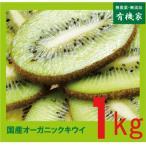 国産無農薬キウイ1kg 有機JAS(無農薬・無添加)
