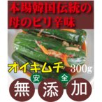 オイキムチ 300g 韓国・李(イー)さんの手作り 無添加きむち 自然醗酵 砂糖不使用