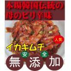 キムチ 韓国手作りイカキムチ 200g 韓国・李(イー)さんの手作り 無添加きむち 自然醗酵 砂糖不使用