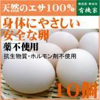 朝取り新鮮卵。天然の飼料のみで育てた鶏の美味しい卵です。