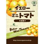 有機種子イエローミニトマト 約90粒