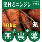 健康ニンジン(泥つき)無化成肥料 生で食べても甘い 10kg
