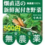 無農薬野菜詰め合わせ 旬の無農薬100%野菜セット 500円