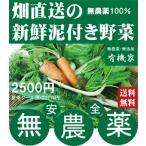 無農薬野菜詰め合わせ 旬の無農薬100%野菜セット 2500円