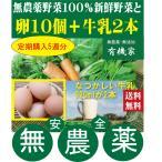 定期購入 無農薬野菜詰め合わせ2000円+むかしの牛乳720ml 2本+特鶏卵10個×5週分