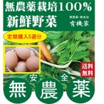 毎週お届け 【送料無料】 特鶏卵10個セットと無農薬野菜詰め合わせX5週分 旬の無農薬100%野菜セット