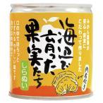 無添加 海辺で育った果実たち(不知火(しらぬい)缶詰)  295g