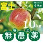 リンゴ富士 無農薬栽培のりんご 10kg 約40個前後 無農薬栽培・青森県「若葉農園」11月下旬発送予定★ワックス不使用