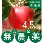 リンゴ紅玉 無農薬栽培のりんご4.5〜 5kg 10月中旬 発送開始 土壌消毒・除草剤・化学農薬・化学肥料不使用