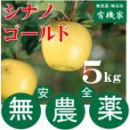 無農薬栽培・青森県「若葉りんご園」の「シナノゴールド」5kg(土壌消毒・除草剤・化学農薬・化学肥料不使用)