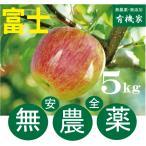 リンゴ富士 無農薬栽培のりんご 5kg 約20個前後 無農薬栽培・青森県「若葉農園」11月下旬発送予定★ワックス不使用
