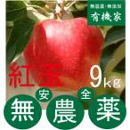 リンゴ紅玉 無農薬栽培のりんご 9Kg〜10kg 10月中旬 発送開始