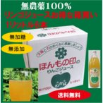 りんごジュース 無農薬栽培無添加リンゴジュース 1L×6本