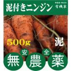 無農薬人参★ニンジン(泥つき)500g★国産人参(茨城県)