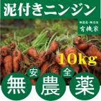 無農薬人参  無農薬人参★ニンジン(泥つき)10kg★国産人参(茨城県)