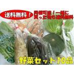 おまかせ野菜詰合わせセット 10品