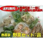 おまかせ野菜詰合わせセット 7品(農薬不使用)